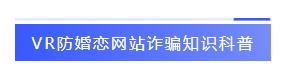 VR防婚恋网站诈骗知识科普-标签.png